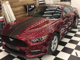 Ford Mustang 2.3 Ecoo boost                                            2016